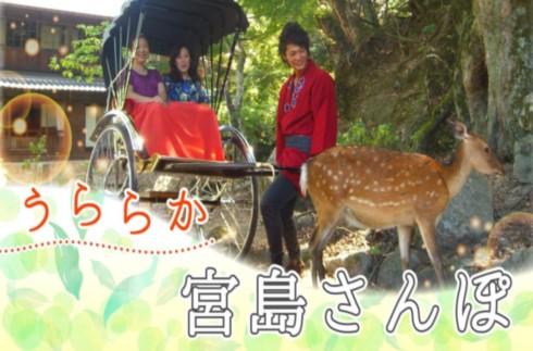 미야지마 산책 모델 루트