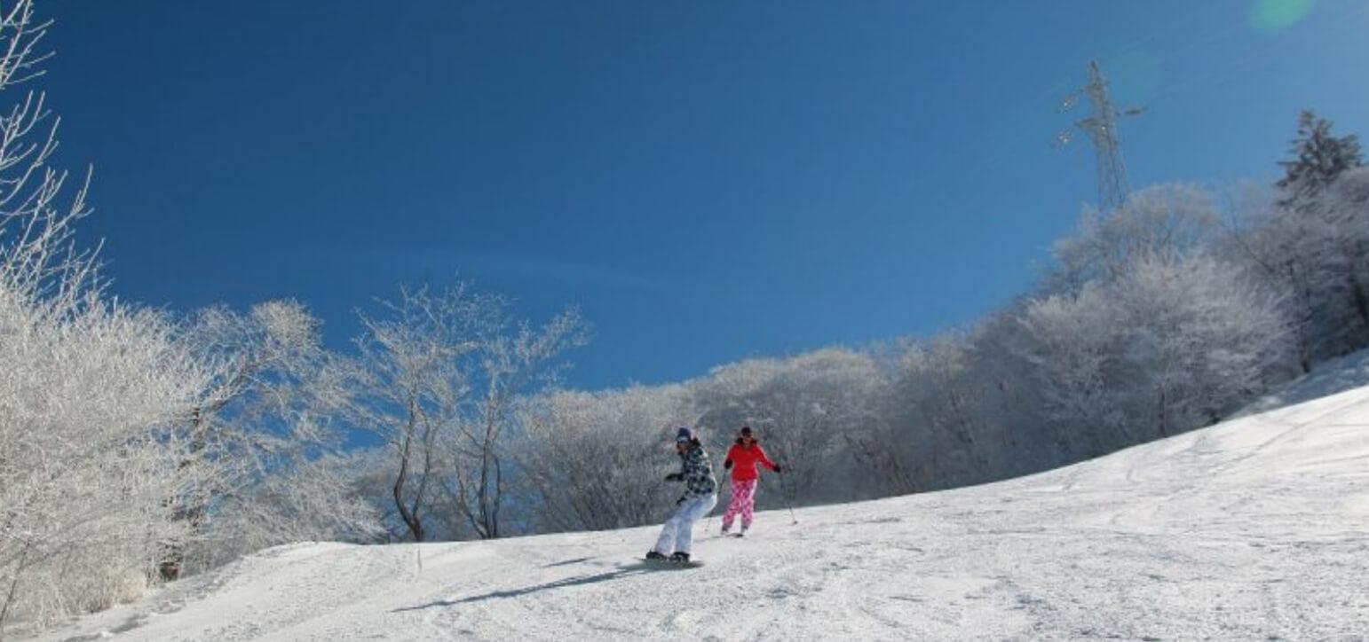 Prince Snow Resorts Karuizawa