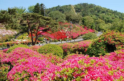 고무로야마 공원