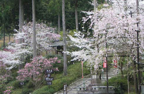 Sanzen-in Temple
