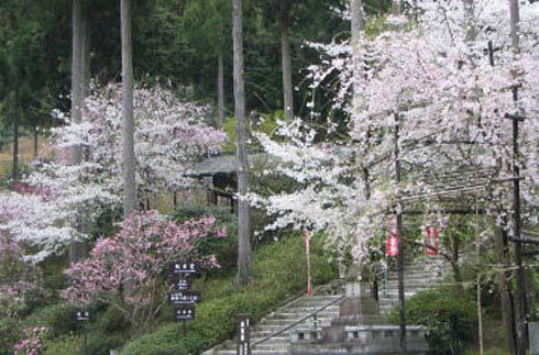 산젠인 사원