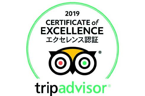 Announcement: TripAdvisor Certificate of Excellence