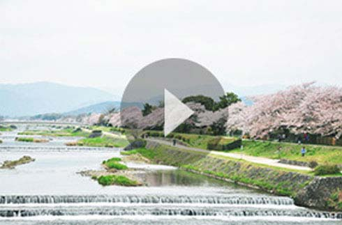 Discover Kyoto | ~Grand Prince Hotel Kyoto~