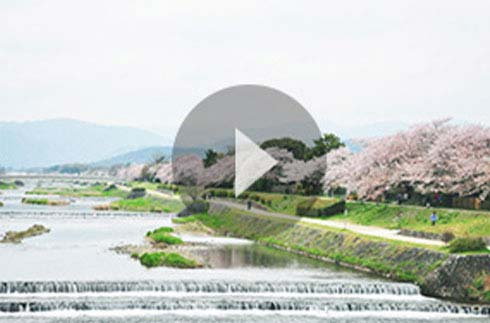 Discover Kyoto | ~The Prince Kyoto Takaragaike~