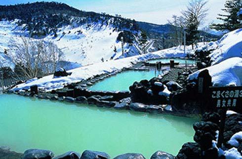 Manza Onsen Tour Pass