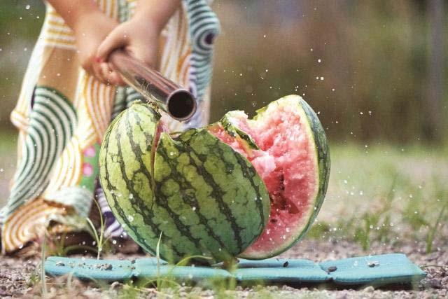 watermelon split