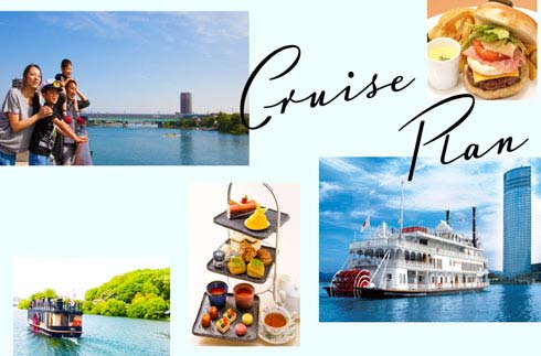 Cruise plan information