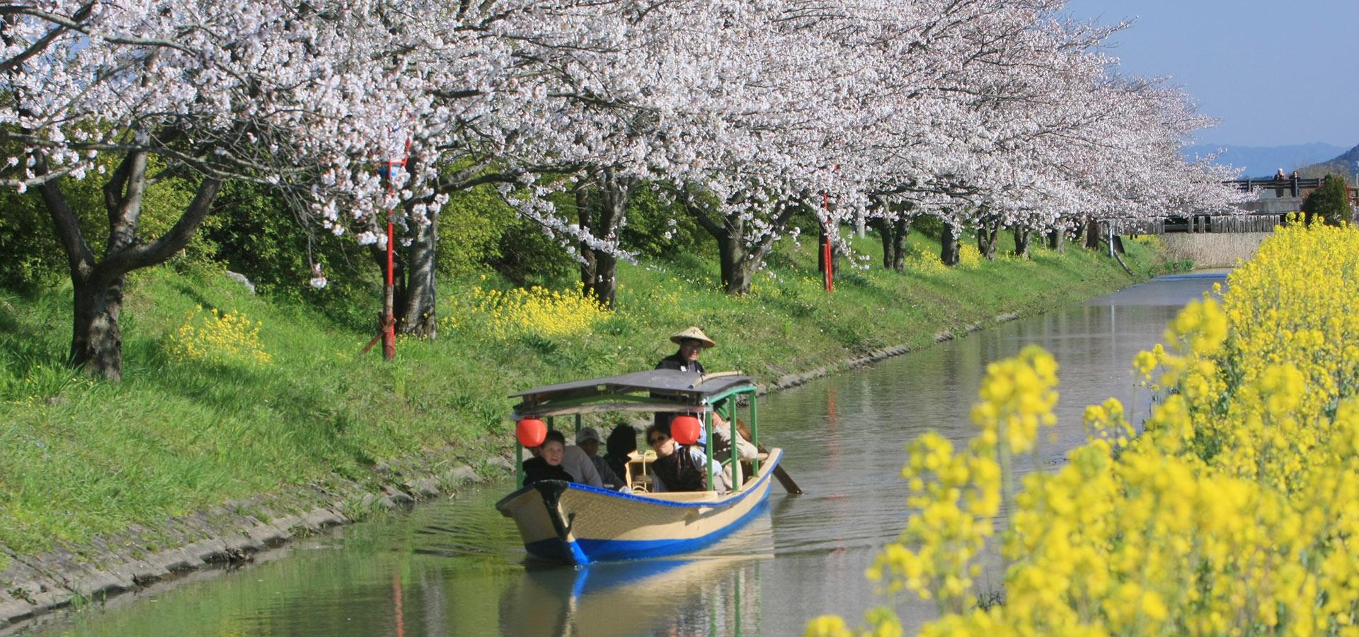 滋賀地區的旅遊信息