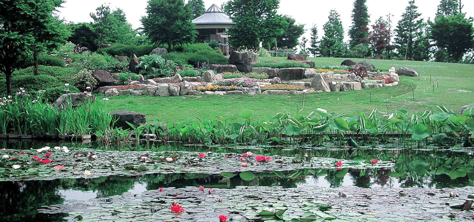 Mizunomori Water Botanical Garden (Kusatsu Aquatic Botanial Garden)