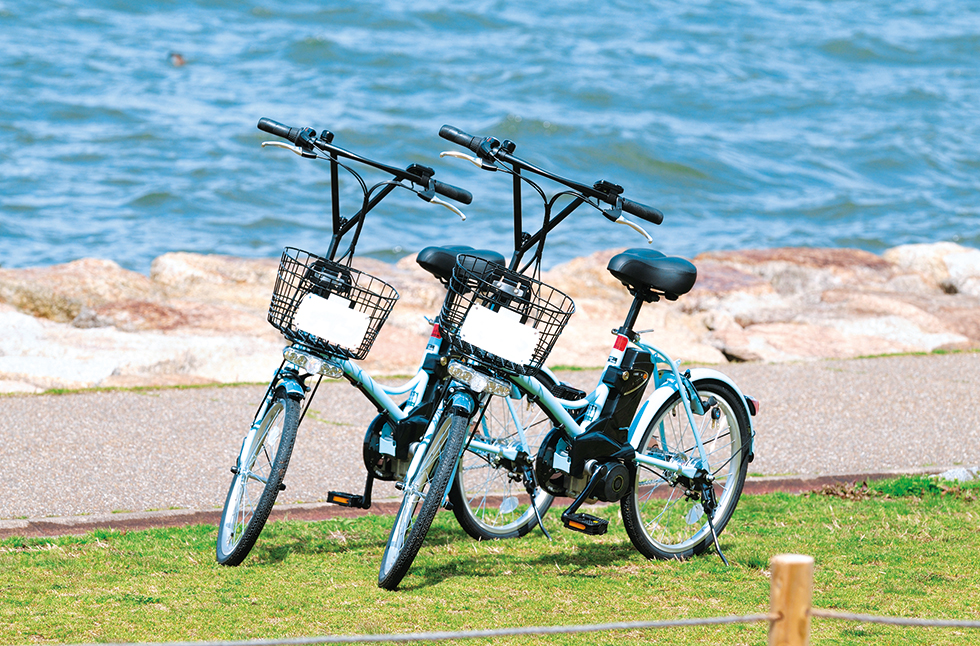 Rent-a-cycles