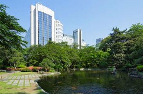 Explore our Japanese Garden