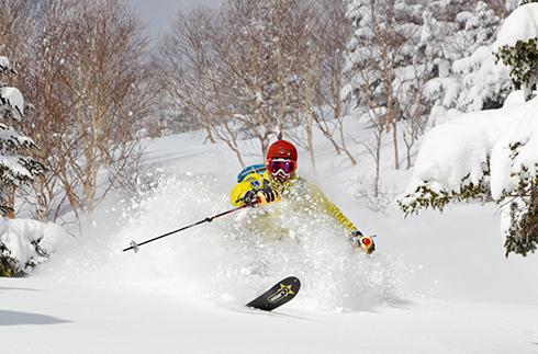 志贺高原烧额山滑雪场⛷