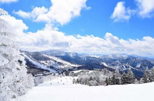 "Shiga Kogen's new ski pack ""Ski pack with great options!"""