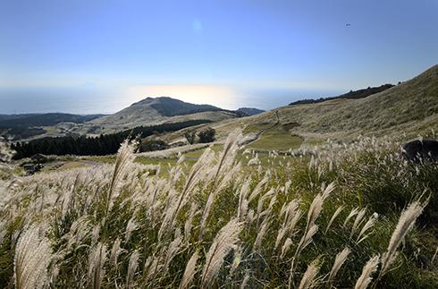 稻取細野高原
