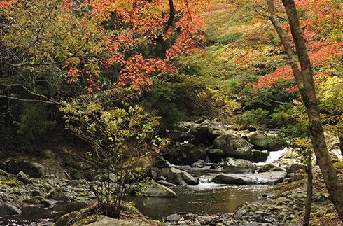 Namesawa Gorge