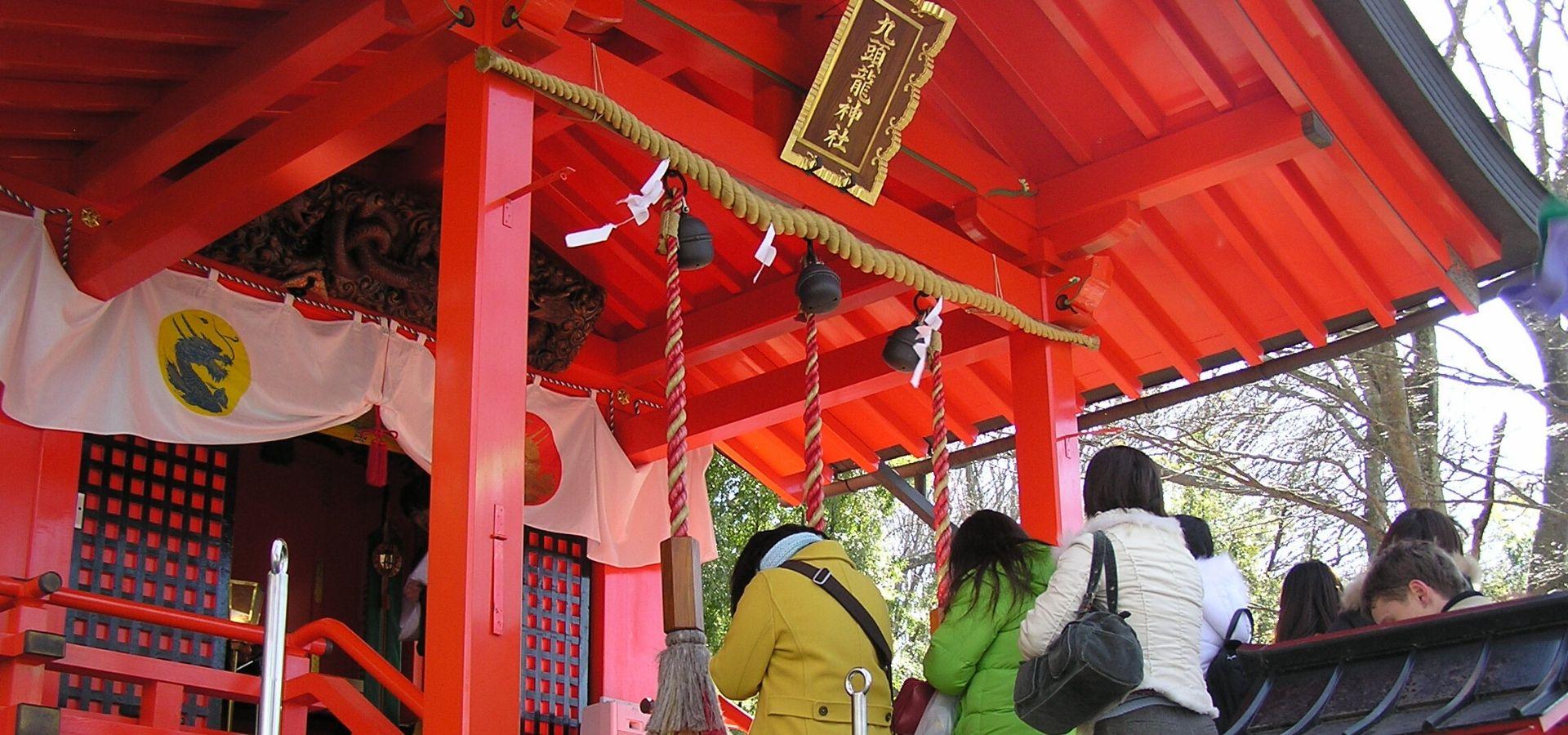 The forest of Hakone Kuzuryu no Mori