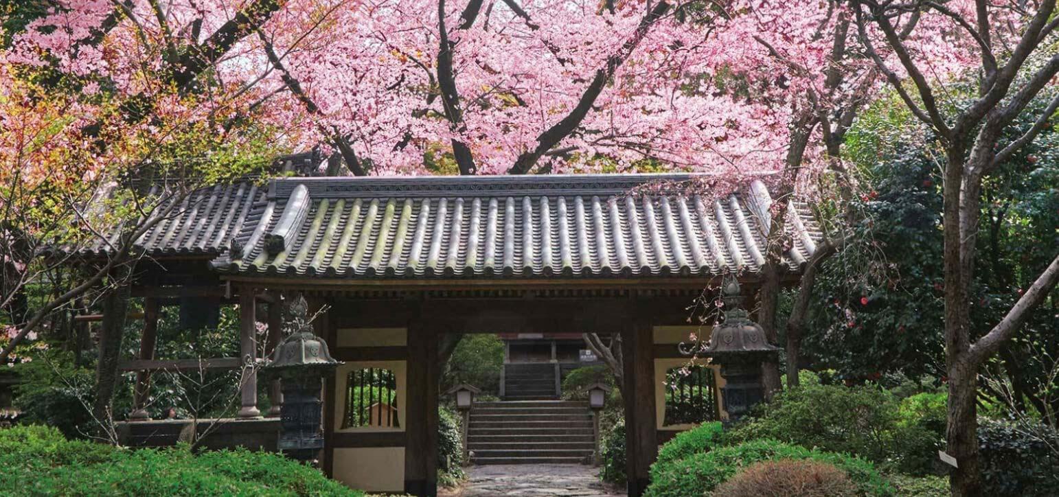 感受四季日本游