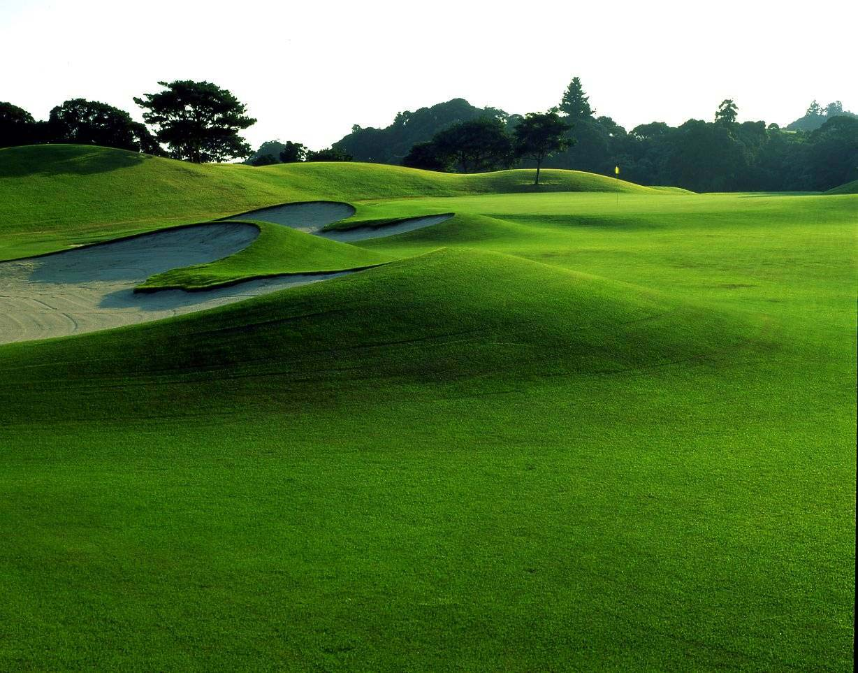 golf_ohara