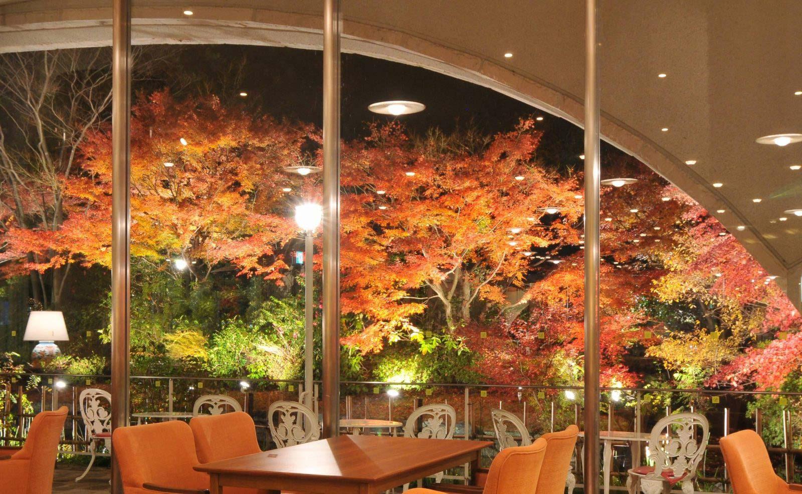 kyoto_kouyou