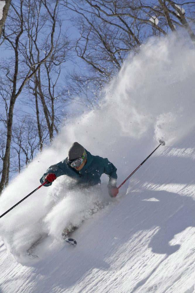 myoko-suginohara-ski