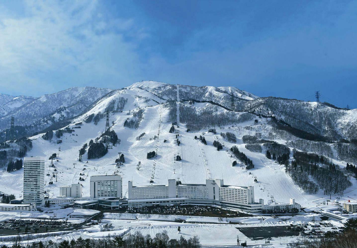 naeba-snow