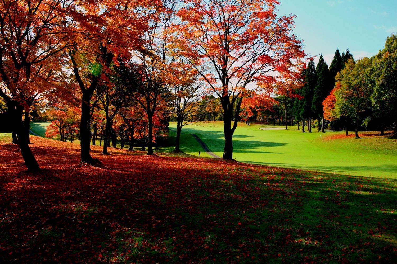 shizukuishi-golf