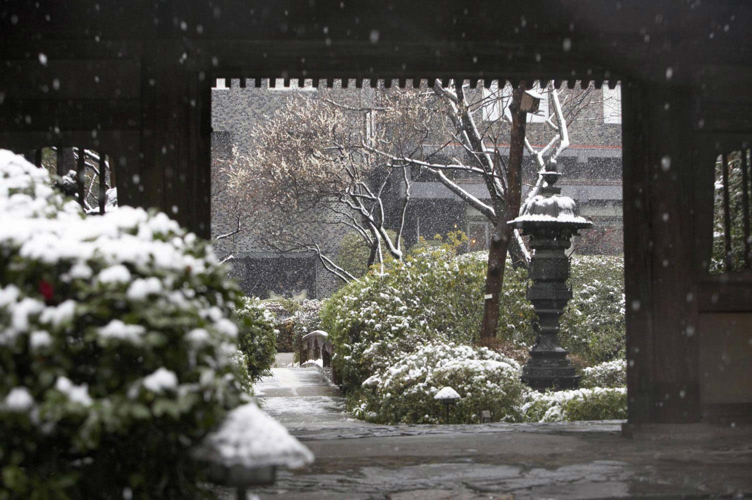 takanawa-japanese-garden-winter