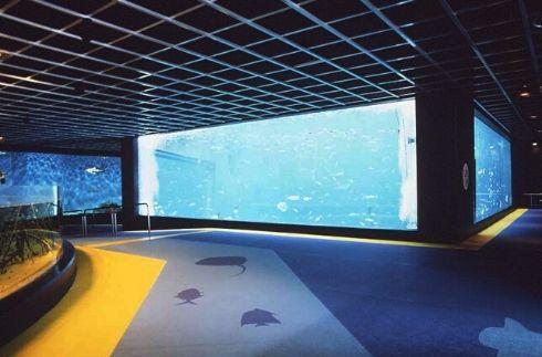 《Hakone-en》Hakone-en Aquarium